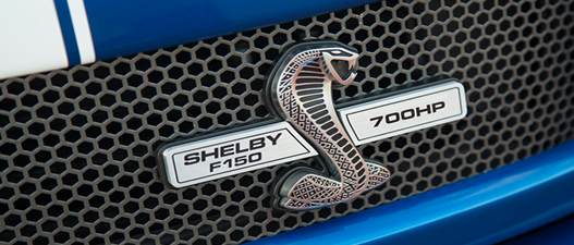 Ford f-150 shelby front